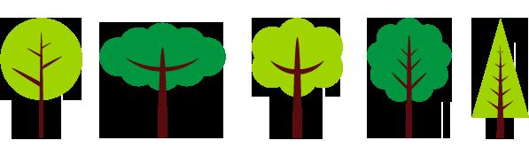 日本の森林も守りながらの家づくり